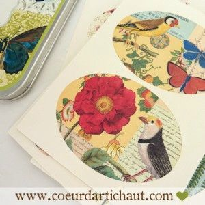 planches-de-stickers-retro-cavallini-faune-et-flore