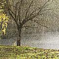 La saison eau - hiver vue par la mtc