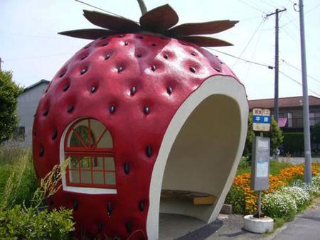 Fruit_Shaped_Bus_Stops_CubeME1