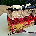 Gâteau aux dragées, fruits rouges et citron