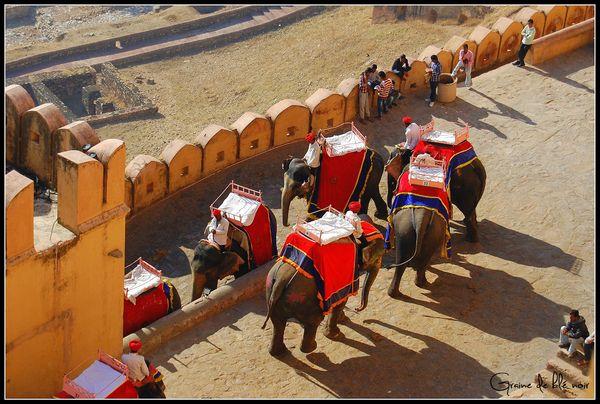 Descente des éléphants