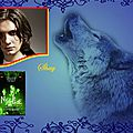 Nightshade tome 2 l'Enfer des loups (Andrea Cremer)