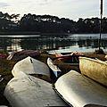 Lac Hossegor 12121521