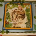 décor chats (3)