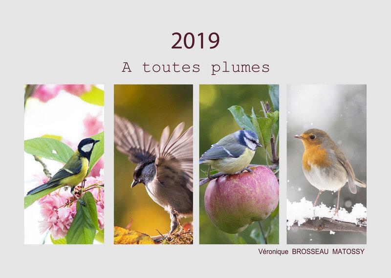calendrier-oiseau-2019-00