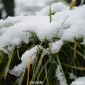 [projet 52-2016] semaine 3 - hiver