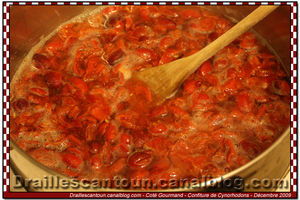 Confiture_Cynorohodons_11