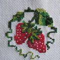 fraisesEva04