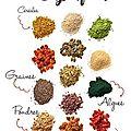 Moringa, spiruline, açaï, curcuma : les super-aliments !