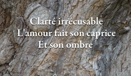 clarte_irre_cusable