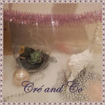 Boule terrarium