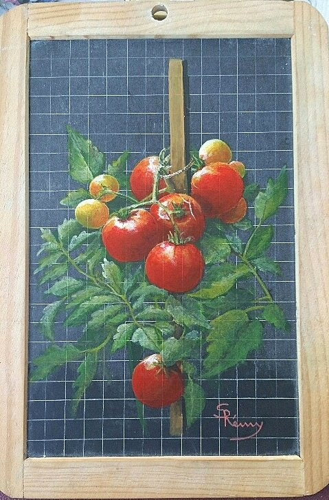 Pied_de_tomates
