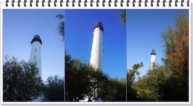 01 phare tree