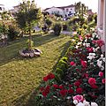 Windows-Live-Writer/jardin_6BD4/DSCF3645_thumb
