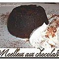 Moelleux aux chocolats