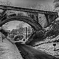 pont palesne 2