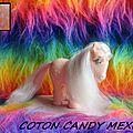 COTON CANDY MEXICO