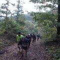 Trail des 7 Hameaux 2015 _ Belle montée-2