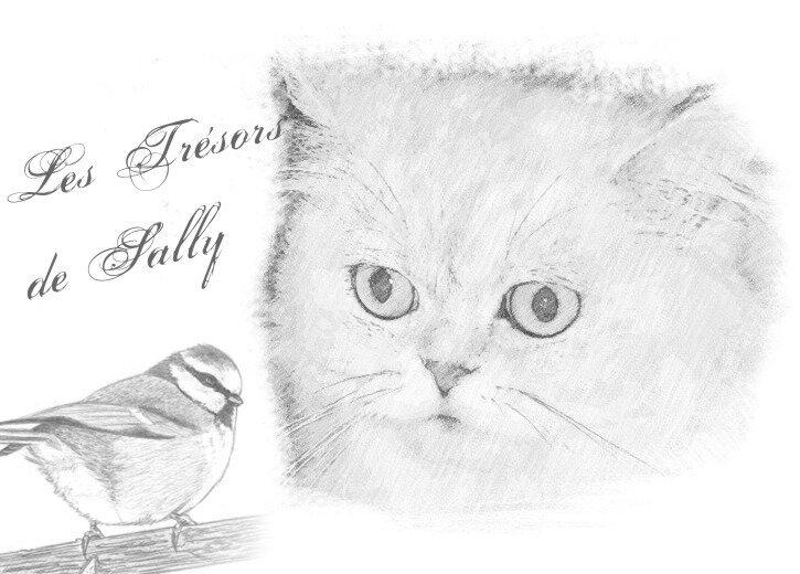sally et oiseau
