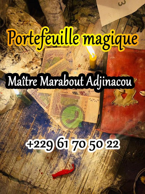 LE PORTEFEUILLE MAGIQUE EXISTE T-IL