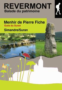 Menhir copie