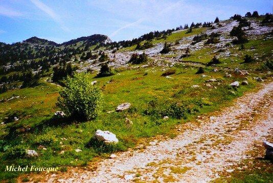 1136) rando pédestre sur le Moucherotte (Vercors)