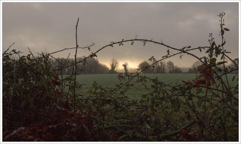 soleil levant brume chemin creux 112015