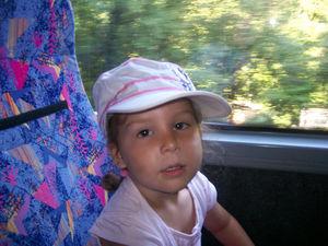 bus (7)
