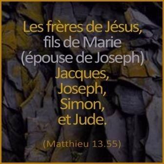 les frères de Jésus selon la Sainte Bible