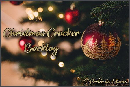 Christmas Cracker Booktag
