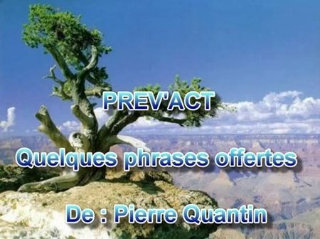 QUELQUES_PHRASES_OFFERTES