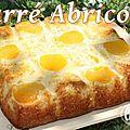~~ carré abricoté ~~