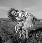 1945_meadow_sitting_sheep_by_dd_mmad132