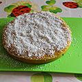 Gâteau leger a la mangue et a la noix de coco, sans gluten, sans laitage