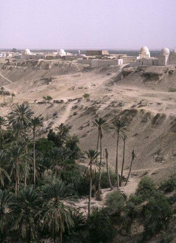 Tunisie Tozeur La corbeille