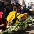 Marché dans les rues de Pushkar