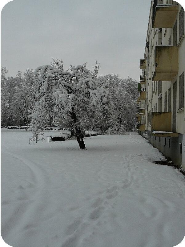 Quartier Drouot - Photo neige 44