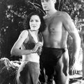 Retro viewing: #tarzan and his mate and #tarzan escapes