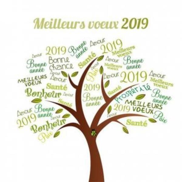 103328-tous-mes-voeux-pour-2019-l0-h0