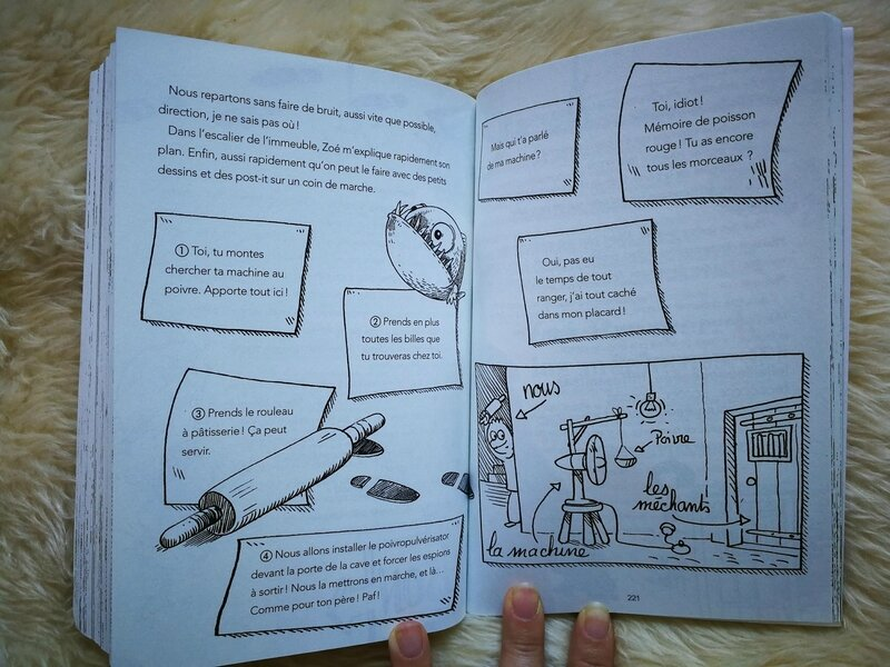 Livre : Le journal d'un baby-siiter fleurus