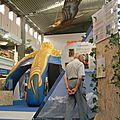 Le monde fascinant des rapaces - Genève - Pro Event