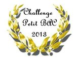 0 Challenge Petit Bac 2013