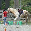 Jeux équestres manchots 2013 (237)