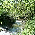 Toujours le long de la rivière ...