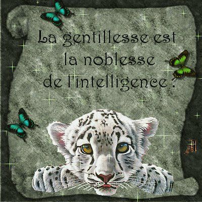 gentillesse_n