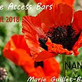 Classe access bars 18 avril 2018