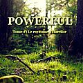 Powerful - tome 1 - le royaume d'harcilor