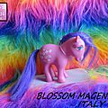 (000) My little pony collector pose. Blossom & varientes
