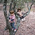 Léna et Pierre dans les arbres