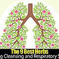 ➡️les 9 meilleures herbes pour le nettoyage pulmonaire et le soutien respiratoire